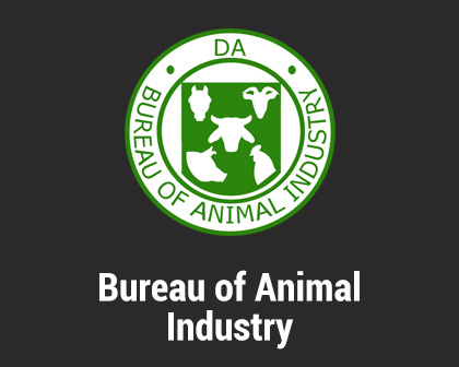 Bureau of Import Services